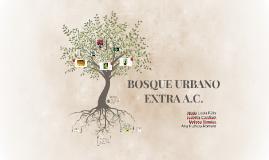 Copy of BOSQUE URBANO