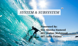 System & Subsystem (MIS)