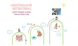 Copy of INFANTE OBSTRUCCIÓN INTESTINAL