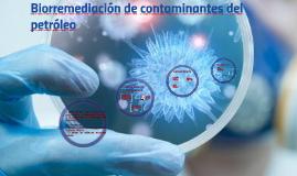 Copy of Biorremediación de contaminantes de petroleo