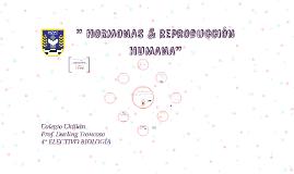 4° ELECTIVO -  SISTEMA REPRODUCTOR & FECUNDACIÓN