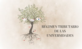 RÉGIMEN TRIBUTARIO DE LAS UNIVERSIDADES