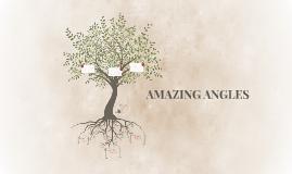 AMAZING ANGLES