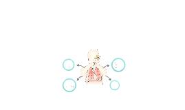 XSCI: The Respiratory System