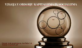 VZGOJA V OBDOBJU KAPITALIZMA IN SOCIALIZMA