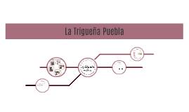 Trigueña Puebla