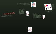 Cardiac cycle backup