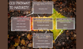 Copy of Copy of CCU PATHWAY TO MATURITY