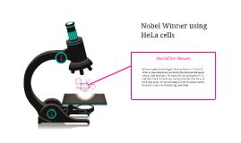 Copy of Nobel Winner using HeLa cells