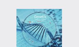 Copy of Genetik