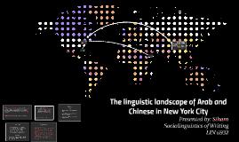 The linguistic landscape