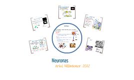 Neuronas: morfología y transmisión del impulso nervioso.