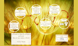 Copy of La Formación y el desarrollo profesional del profesorado