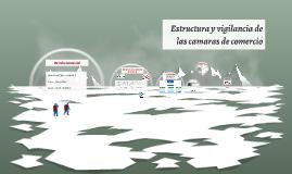 Copy of Estructura y vigilancia de las camaras de comercio