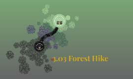 3.03 Forest Hike