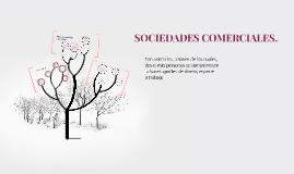 SOCIEDADES COMERCIALES.