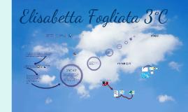 Mappa d'esame Elisabetta Fogliata