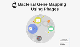 Bacterial Gene Mapping