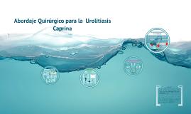 Abordaje quirúrgico para la urolitiasis caprina