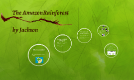 The AmazonRainforests