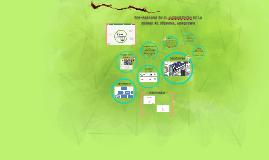 Copy of Eco-paradas