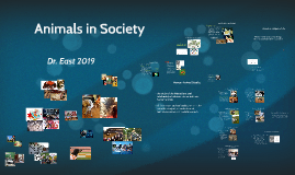 Animals and Society and