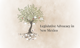 Legislative Advocacy Training –  How to Navigate the New Mex