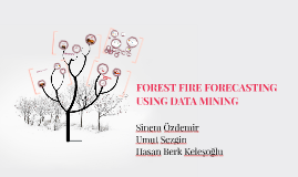 FOREST FIRE FORECASTING USING DATA MINING