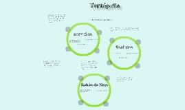 Turtopolis