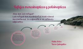 Copy of Reflejos monosinapticos y polisinapticos
