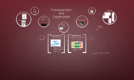 Professionalism and Organizaton