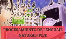 PROCESAMIENTO DE LENGUAJE NATURAL (PLN)