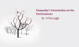 Humanity's Destruction on the Environment