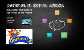 Danimal In South Africa