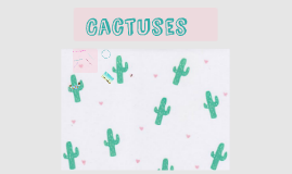 Copy of Cactuses