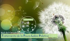Tratamiento de la Fisura Labio Palatina