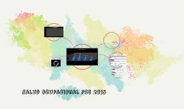 salud ocupacional PSG 2015