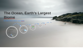 The Ocean, Earth's Largest Biome