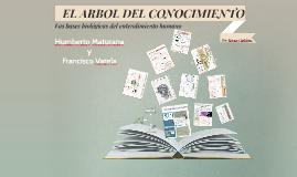 el arbol del conocimiento humberto maturana pdf english