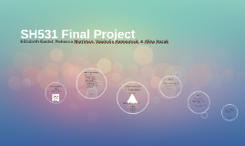 Copy of SH531 Final Project
