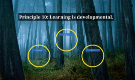 Principle 10: Learning is developmental.