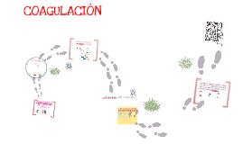 Copy of CASCADA DE LA COAGULACIÓN