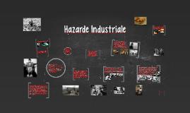 Copy of Hazarde Industriale