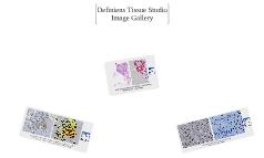 Definiens Tissue Studio Gallery
