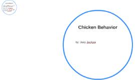 chicken beaveure
