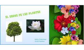 Copy of EL REGNE DE LES PLANTES