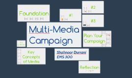 Multi-Media Campaign