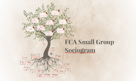 FCA Small Group Sociogram