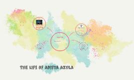 The life of aditya akula