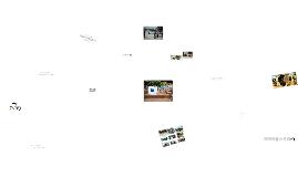 물나무사진학교안내프레지